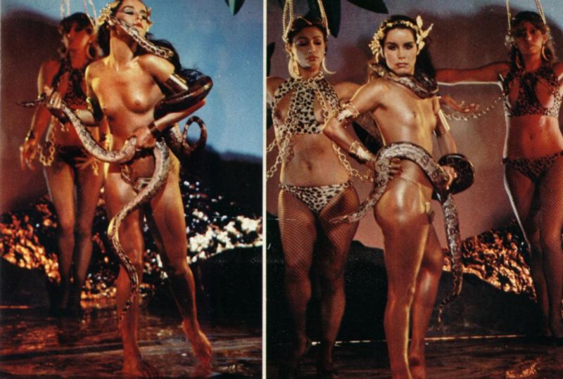 3 playboy de novembro de 1981